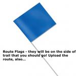 Dirty Duro Blue Flag